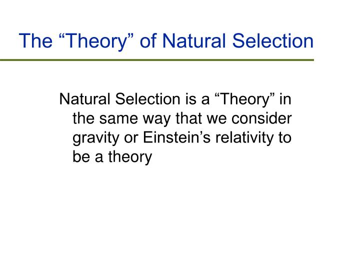 "The ""Theory"" of Natural Selection"