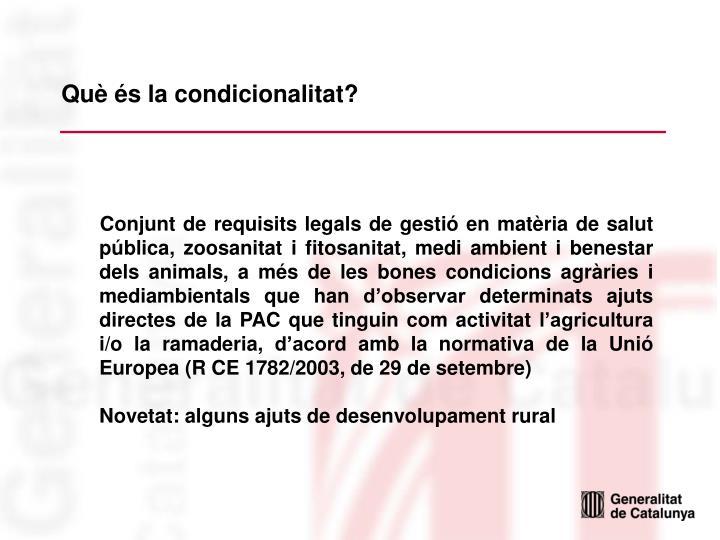Què és la condicionalitat?