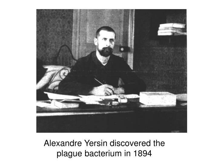 Alexandre Yersin discovered the plague bacterium in 1894