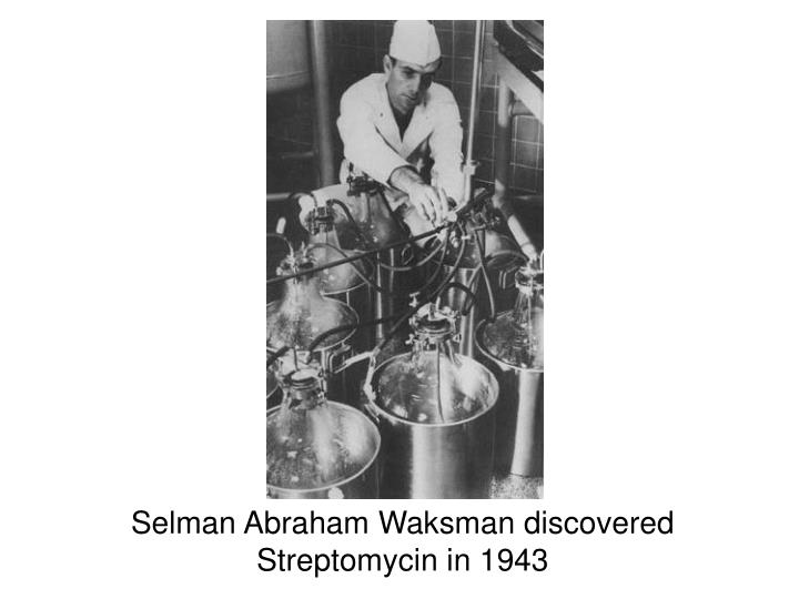 Selman Abraham Waksman discovered Streptomycin in 1943