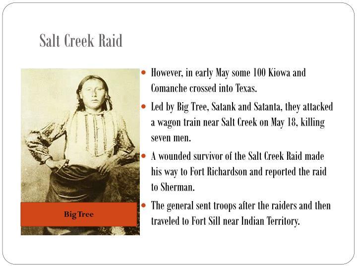 Salt Creek Raid
