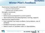 winter pilot s feedback