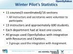 winter pilot s statistics