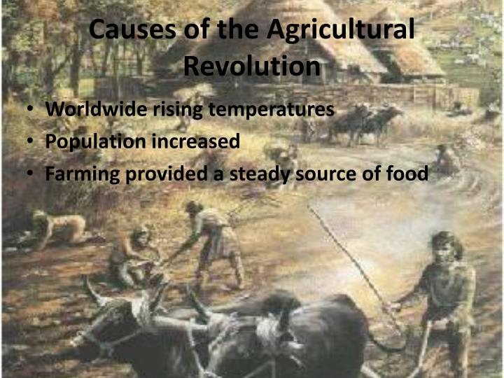 Causes of the Agricultural Revolution
