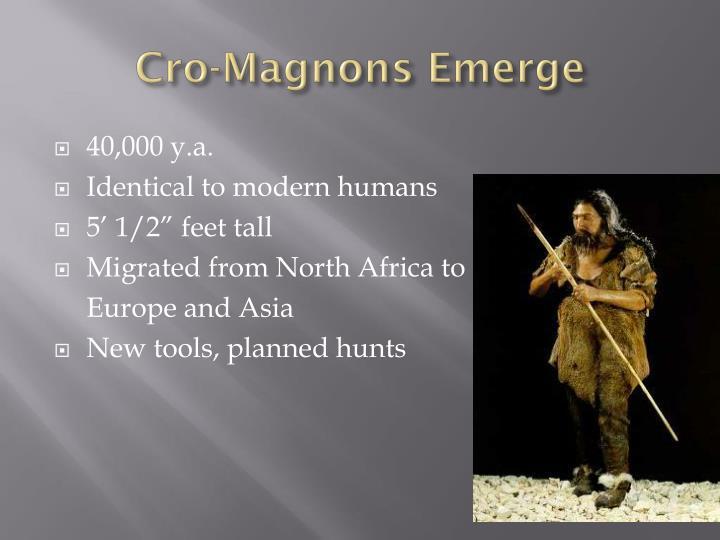 Cro-Magnons Emerge