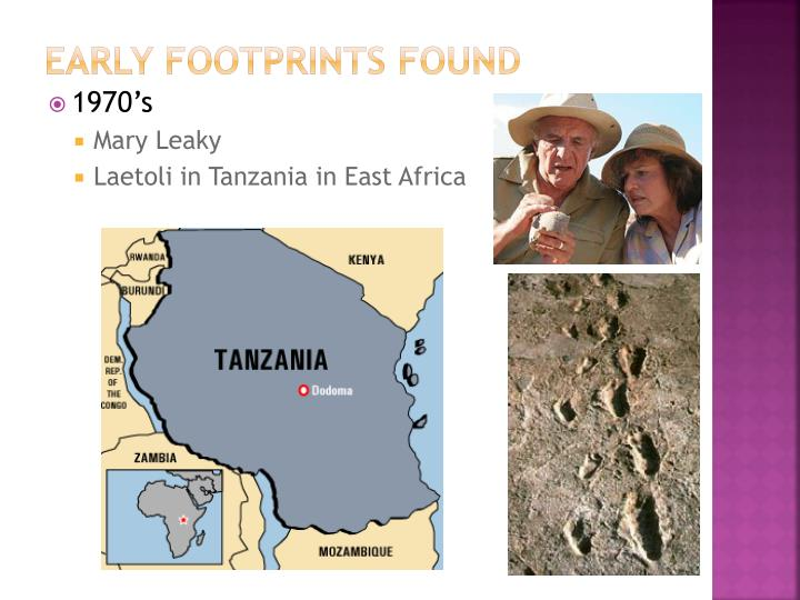 Early Footprints Found