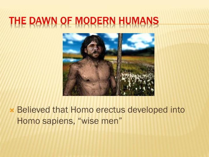 "Believed that Homo erectus developed into Homo sapiens, ""wise men"""