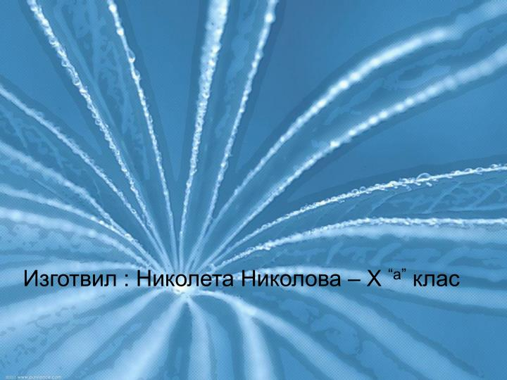 Изготвил : Николета Николова – Х