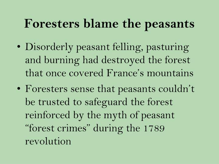 Foresters blame the peasants
