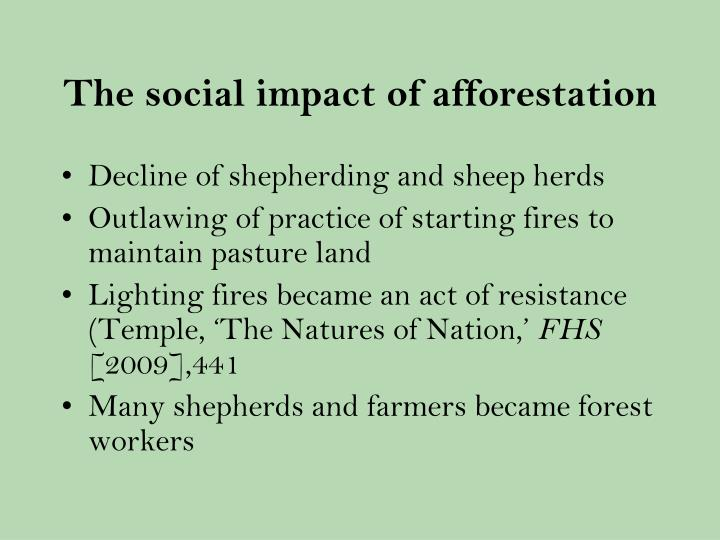The social impact of afforestation