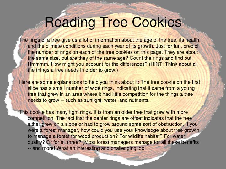 Reading Tree Cookies