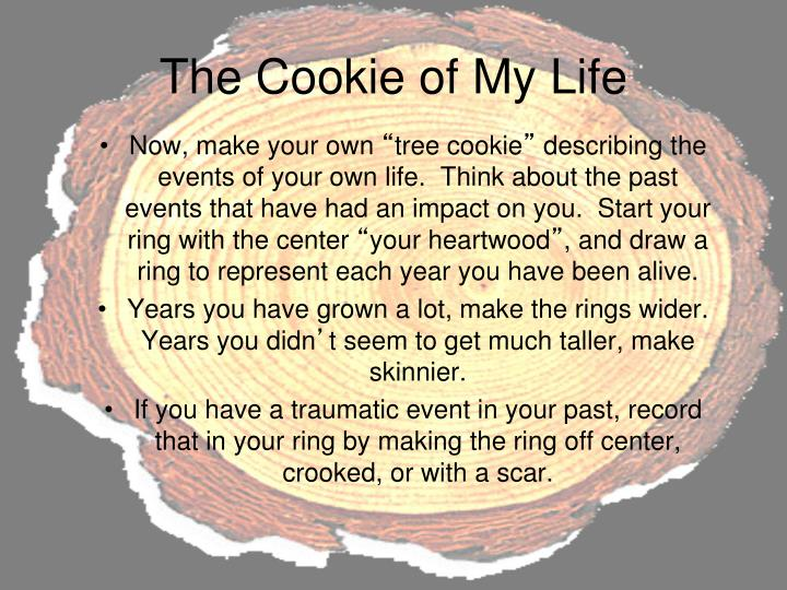 The Cookie of My Life