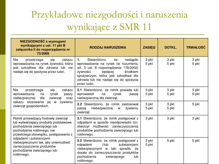 Przykładowe niezgodności i naruszenia wynikające z SMR 11