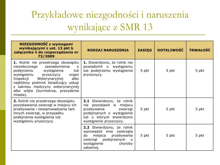 Przykładowe niezgodności i naruszenia wynikające z SMR 13