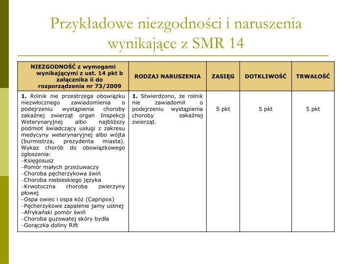 Przykładowe niezgodności i naruszenia wynikające z SMR 14