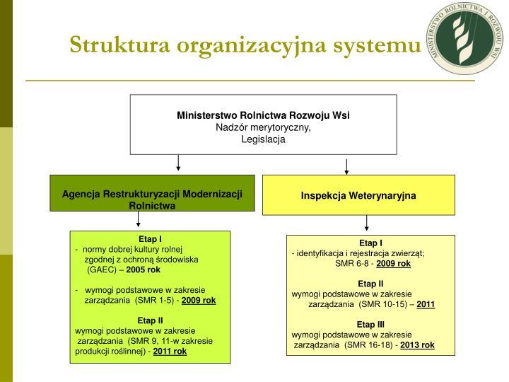 Struktura organizacyjna systemu