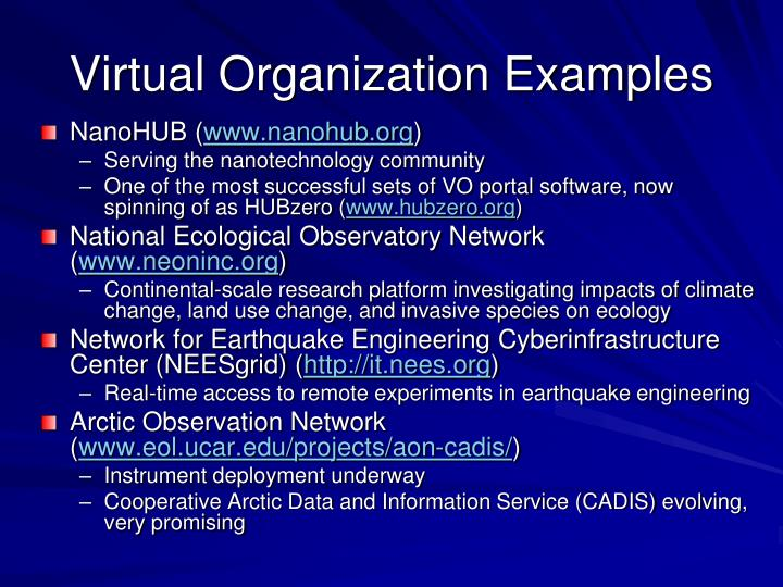 Virtual Organization Examples