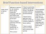 brief function based interventions
