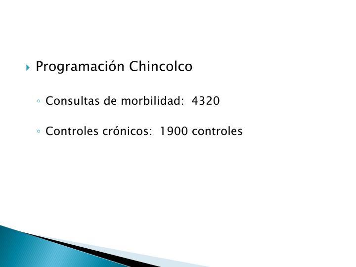 Programación Chincolco