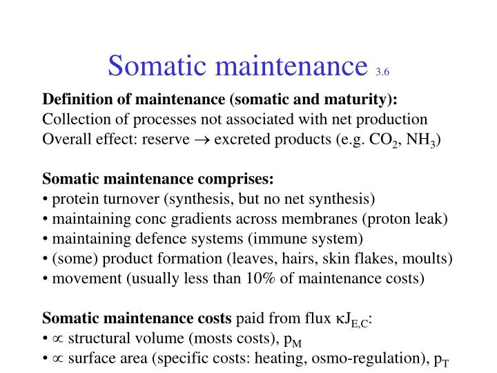 Somatic maintenance