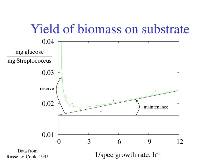 Yield of biomass on substrate
