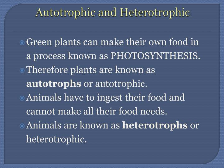 Autotrophic and Heterotrophic