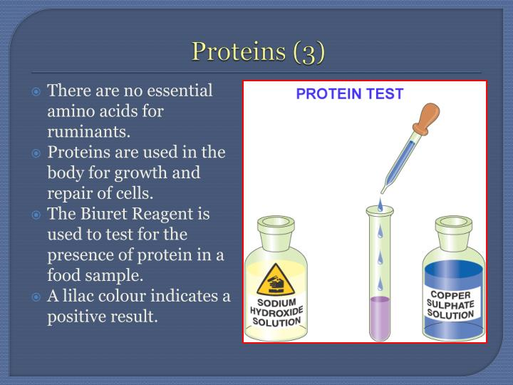 Proteins (3)