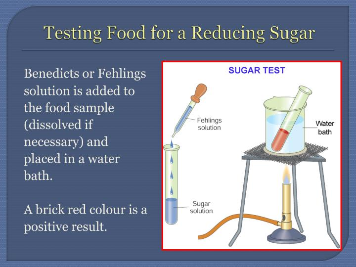Testing Food for a Reducing Sugar