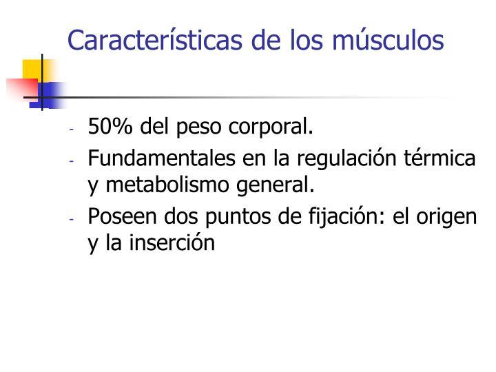 Características de los músculos