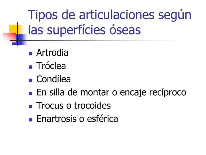 Tipos de articulaciones según las superfícies óseas