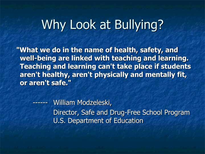 Why Look at Bullying?