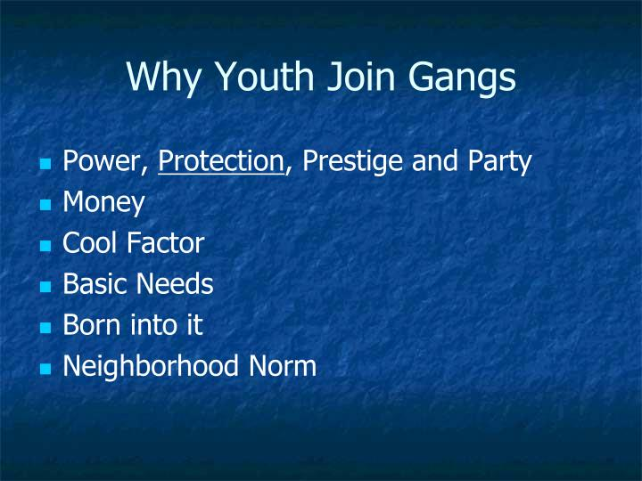 Why Youth Join Gangs