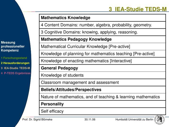 3  IEA-Studie TEDS-M