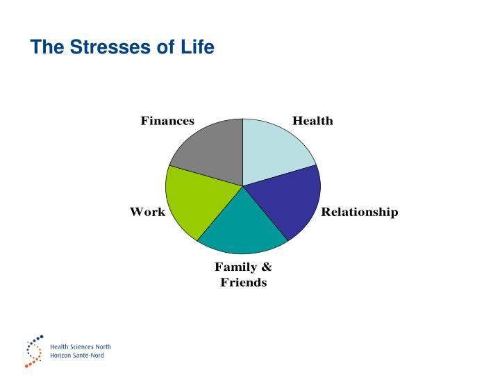 The Stresses of Life