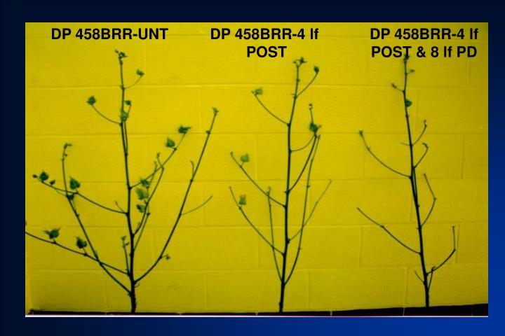 DP 458BRR-UNT