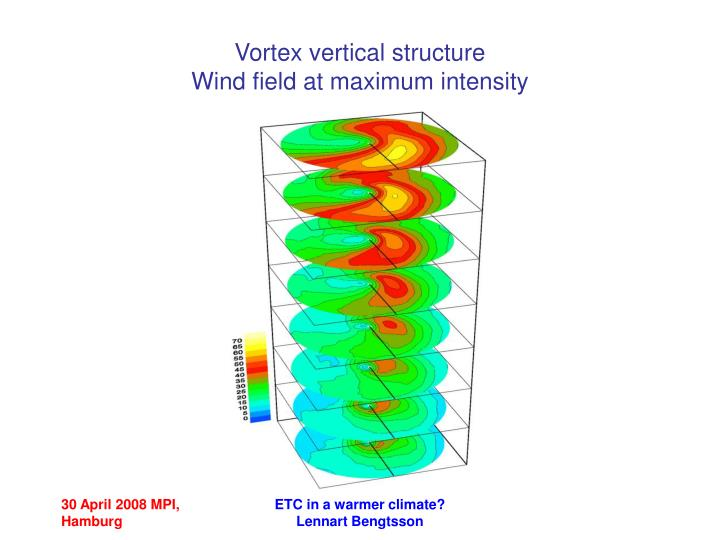 Vortex vertical structure