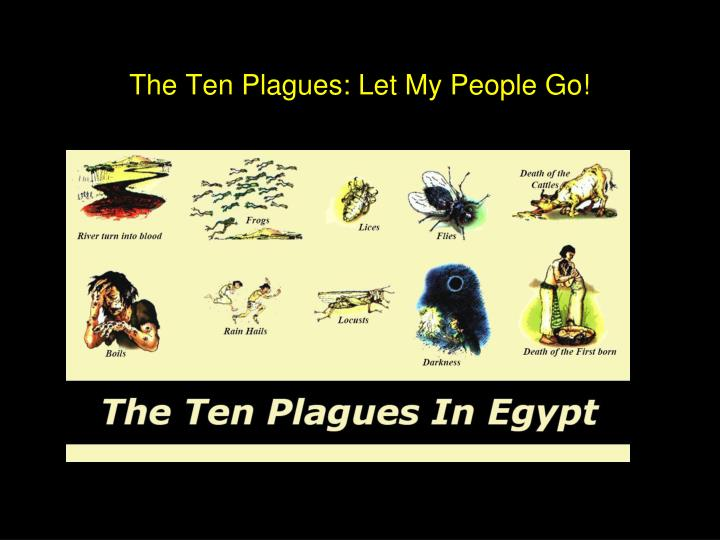 The Ten Plagues: Let My People Go!