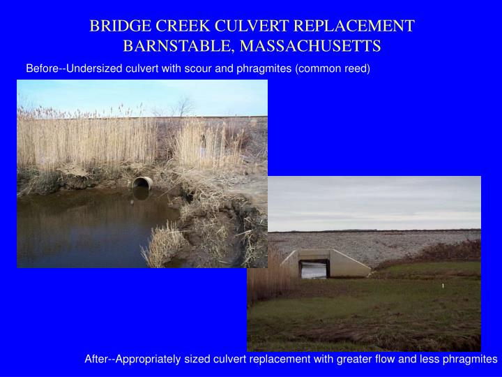 BRIDGE CREEK CULVERT REPLACEMENT