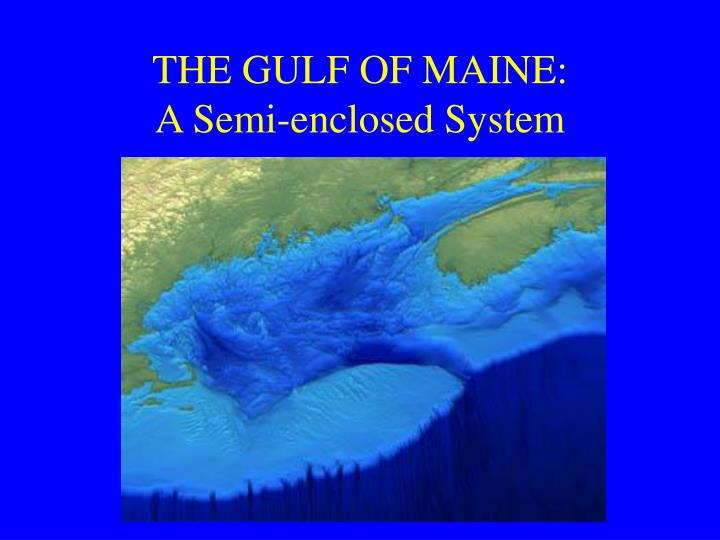 THE GULF OF MAINE: