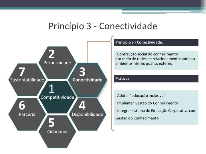 Princípio 3 - Conectividade