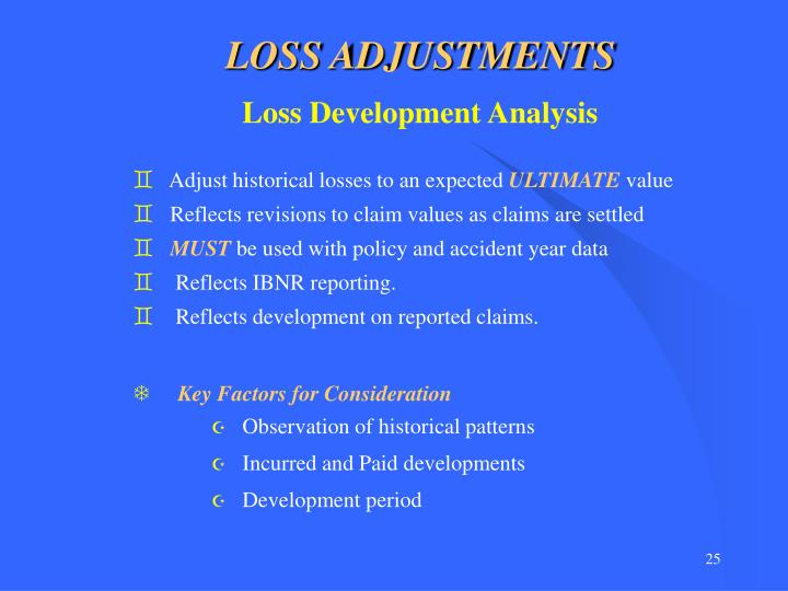 LOSS ADJUSTMENTS