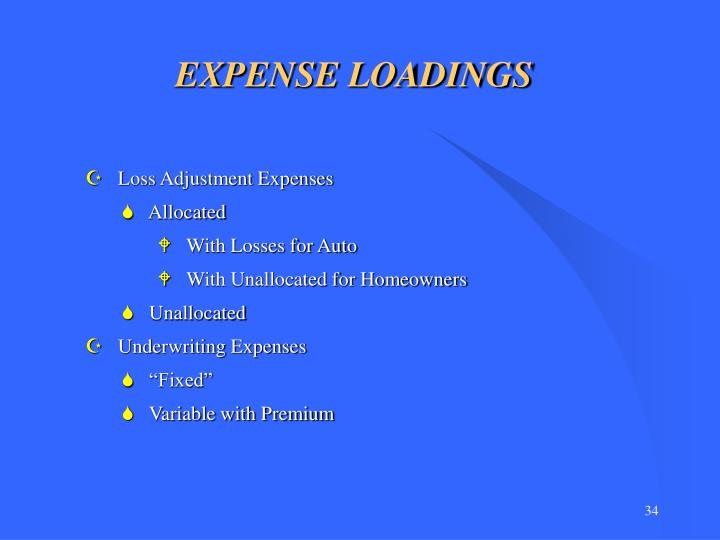 EXPENSE LOADINGS