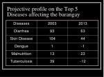 projective profile on the top 5 diseases affecting the barangay