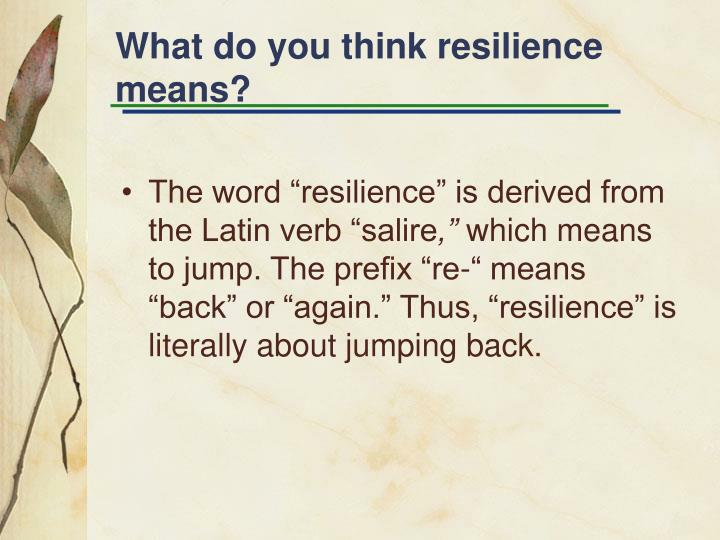 What do you think resilience means?