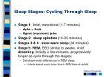 sleep stages cycling through sleep