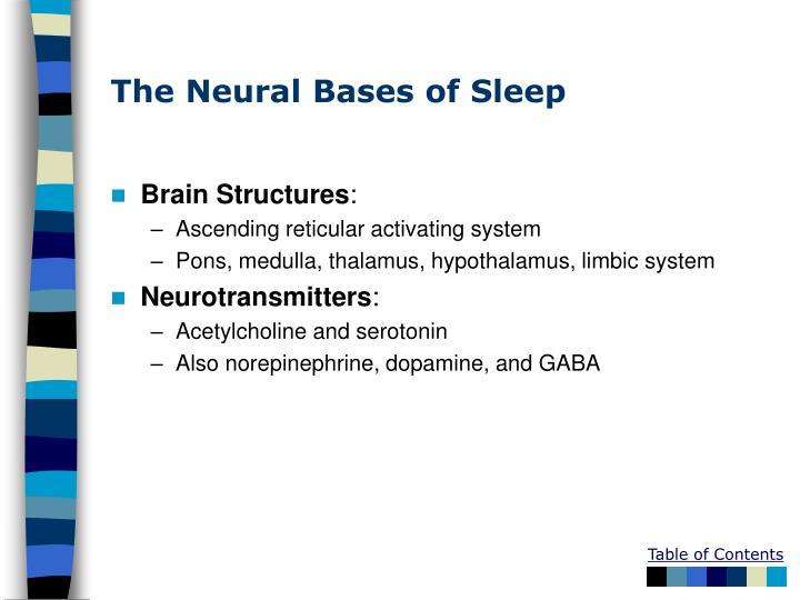 The Neural Bases of Sleep