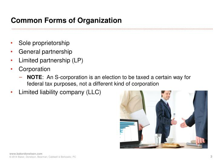 Common Forms of Organization