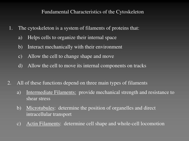 Fundamental Characteristics of the Cytoskeleton
