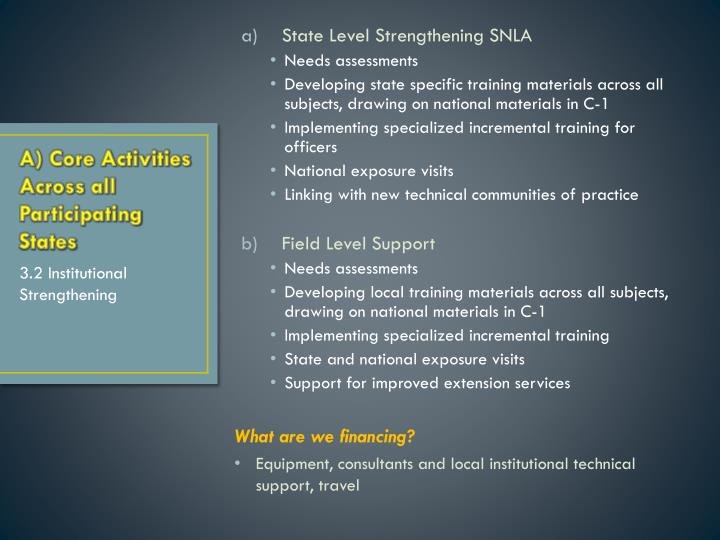 State Level Strengthening SNLA