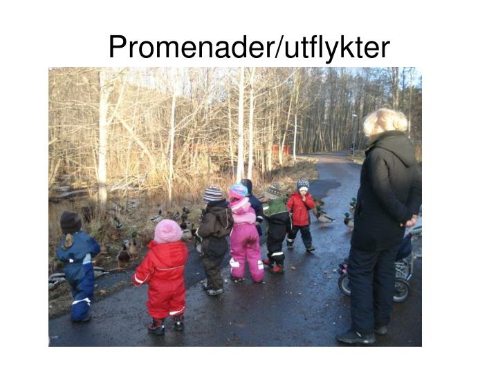 Promenader/utflykter